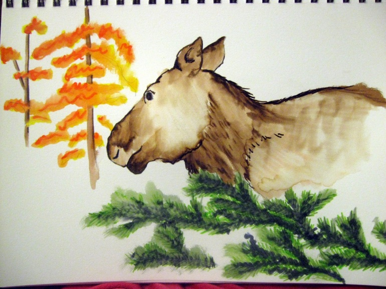 A moose! Not too bad for very little drawing time. And I've never drawn a moose before.